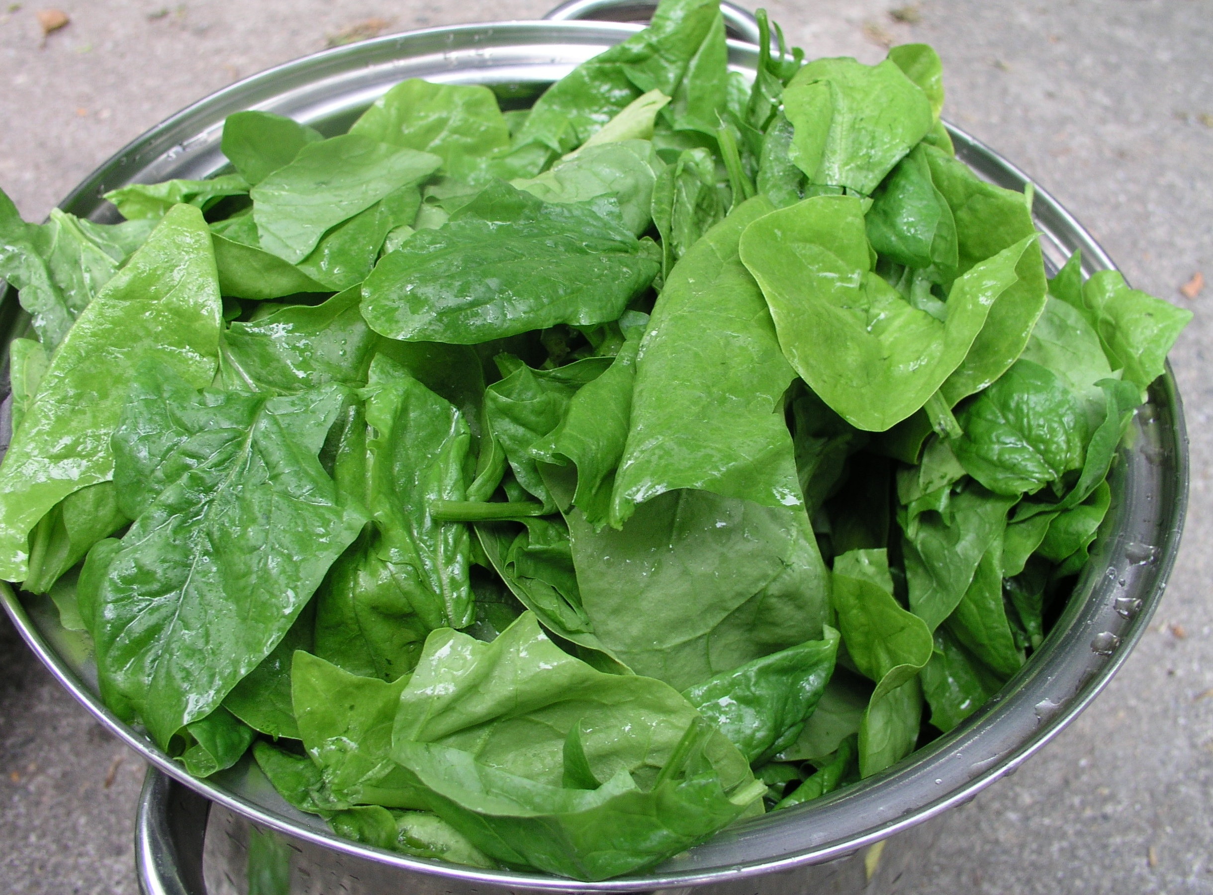 Spinach Negative Calorie Food