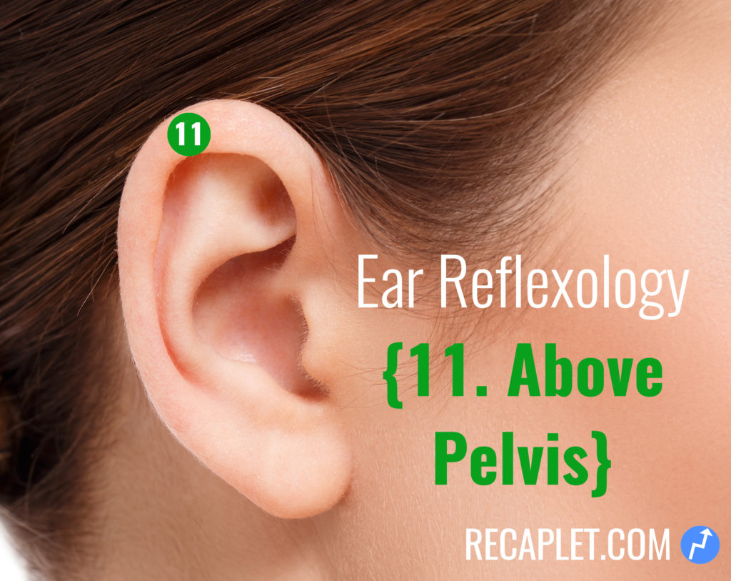 Ear Reflexology for Above Your Pelvis