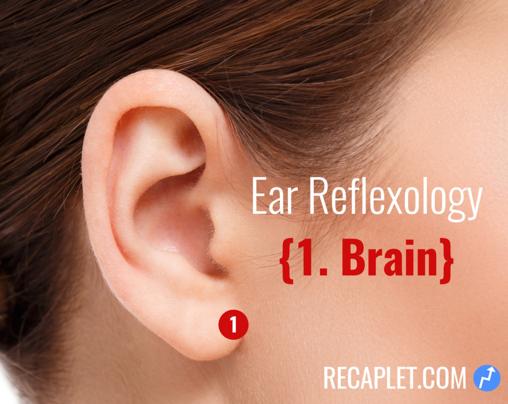 Ear Reflexology for Brain
