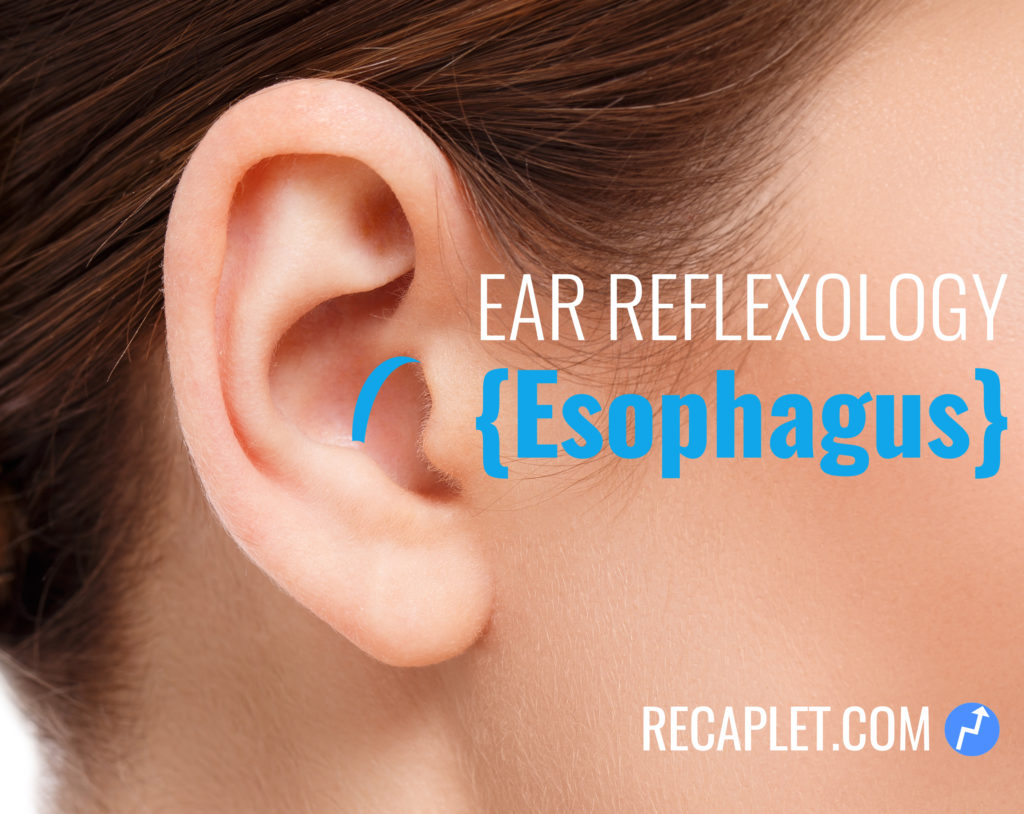 Esophagus Reflexology