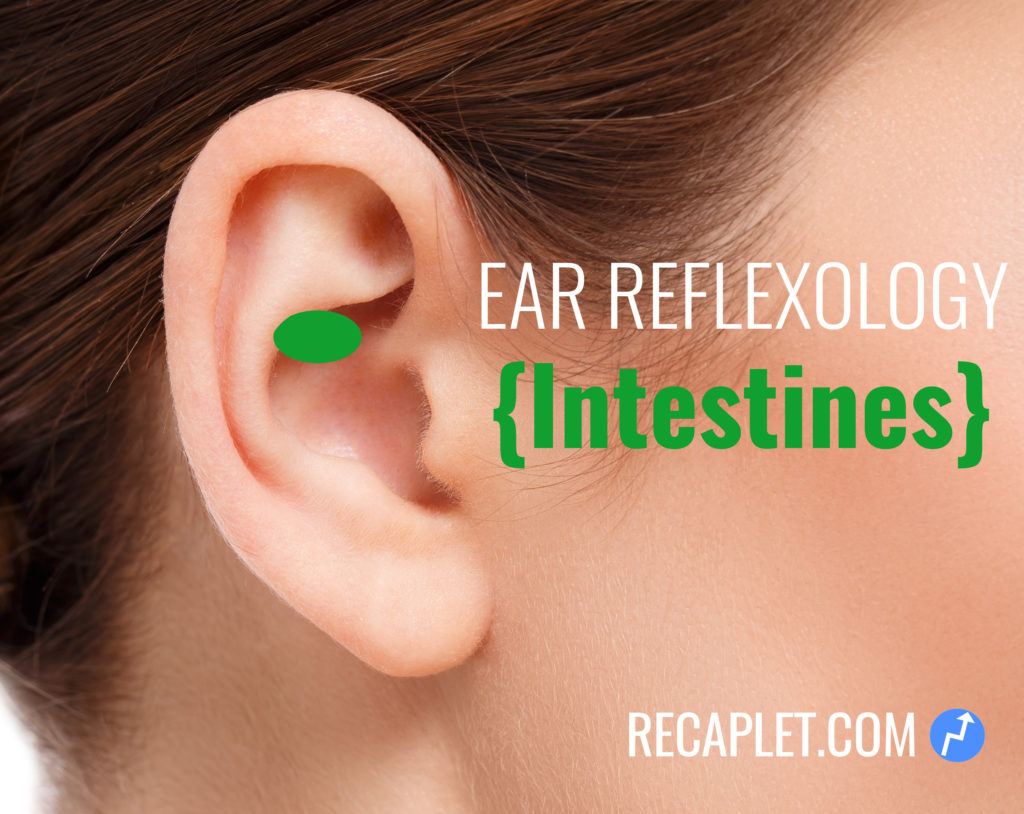 Intestine Ear Reflexology