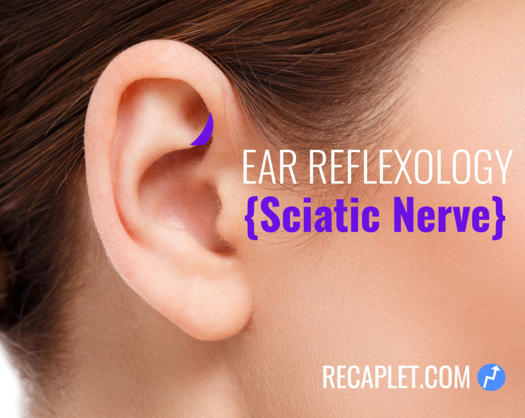 Sciatic Nerve Reflexology