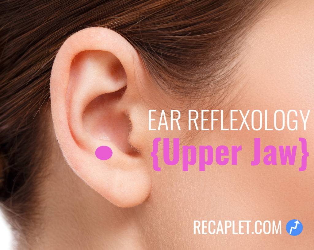 Upper Jaw Pain Reflexology